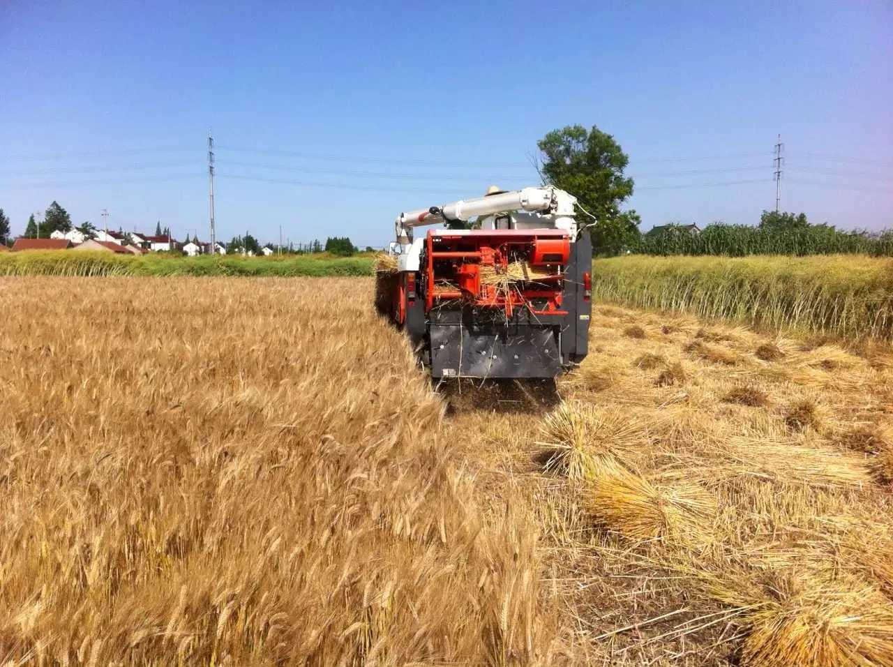 水稻割捆机绳子打捆机绳厂家直销久保田水稻